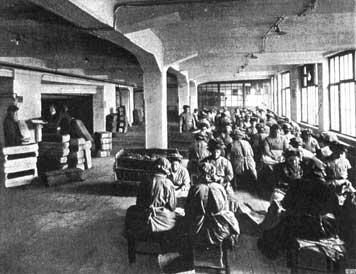 Blick in den Tabaksortiersaal der Waldorf-Astoria-Zigarettenfabrik. (Fotografie, 1913)