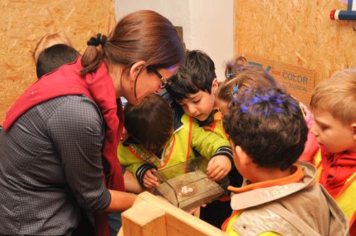 Einige Kinder schauen mit Martina Merklinger das Modell eines Mauersegler-Nestes an. (Foto: Ait Atmane)