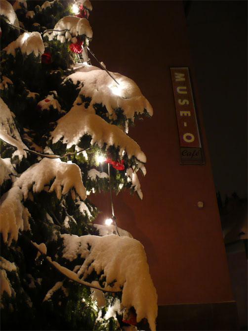 muse-o-weihnachtsbaum_502px